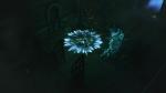 Diablo III_beta_Wizard casting Frost Nova
